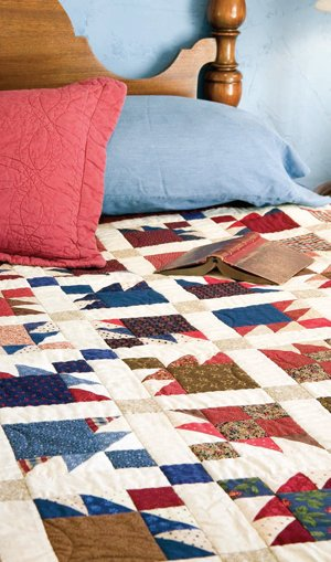 Free Pattern Birds Of A Feather Quilt By Mccalls